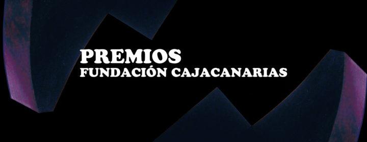Premios de Artes Plásticas 'Manolo Millares' de CajaCanarias