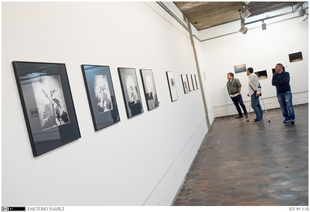XXI Premio Internacional de Fotografía Rafael Ramos García de la Universidad de La Laguna
