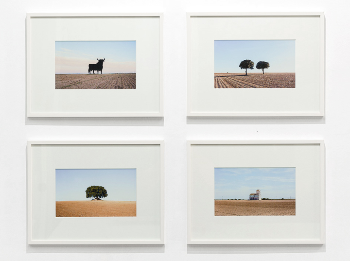 Sergio Acosta - Cuaderno de campo - El Paisaje Interior - Fotografía contemporánea